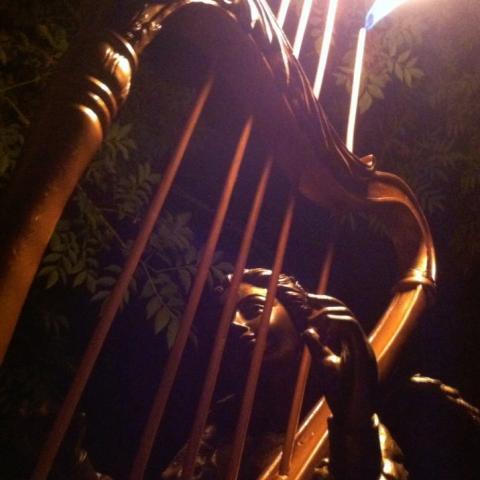 Tony D'Aula Fire Harp
